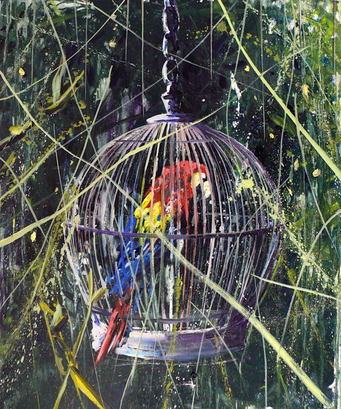 Parrots habitat