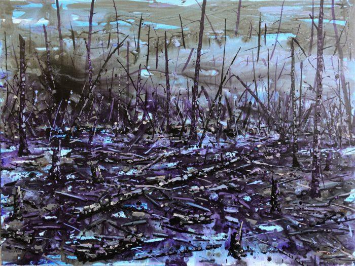 Deforestation 1 (Palm oil fire)